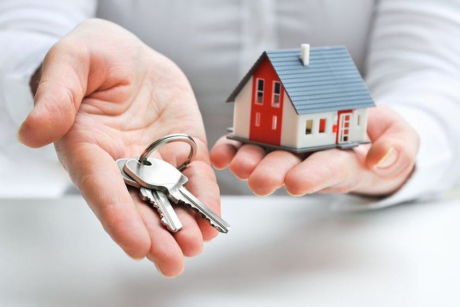 Property & Letting Agent Fees & Services
