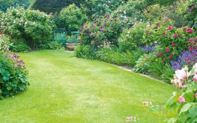 How to Refresh Your Rental's Lawn This Spring